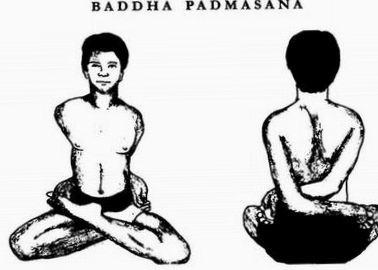 Баддха Падмасана